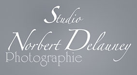 "Photographe ""Norbert Delauney"""